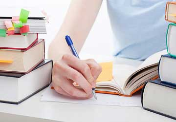 An Overview Of Essay Paper